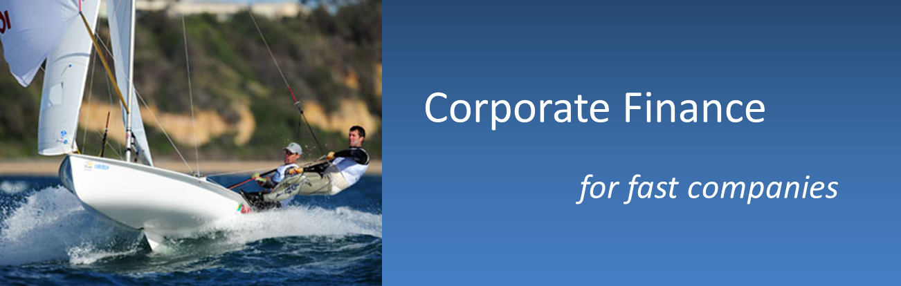 Corporate Finance for fast Companies - Eumedix